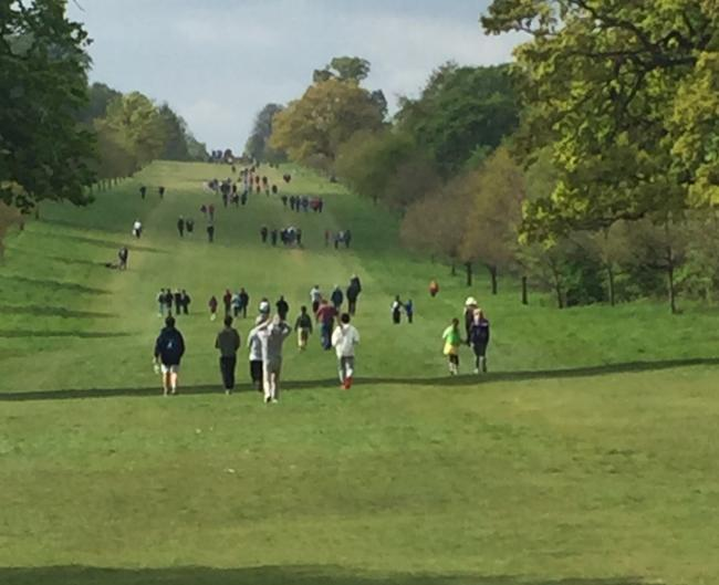 Windsor Great Park - no longer to be the site for Countryfile Live