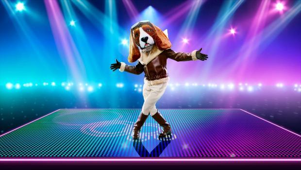 Slough Observer: Beagle. (ITV)