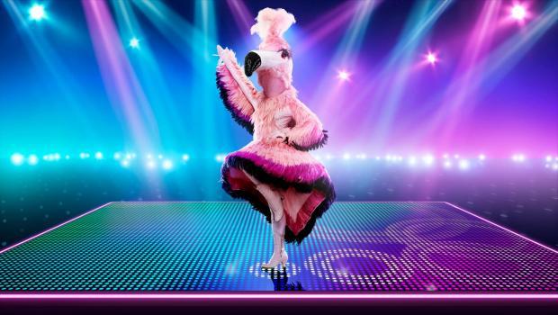 Slough Observer: flamingo. (ITV)