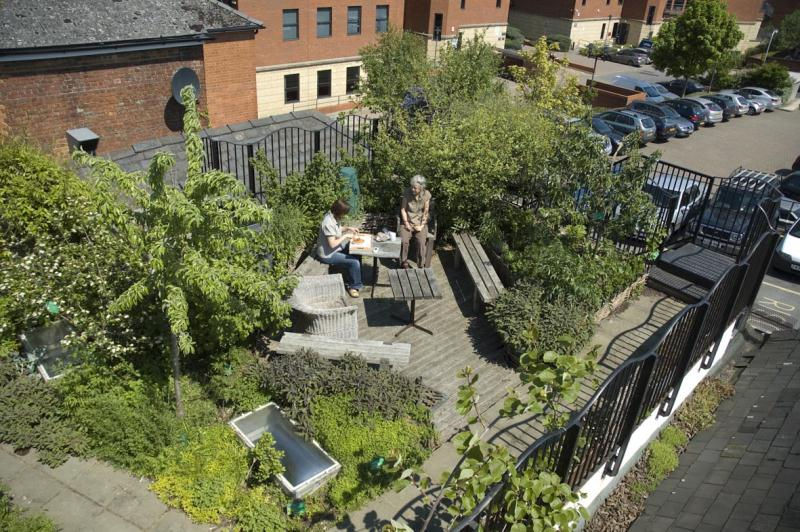 RISC Roof Garden Opening for NGS Charities
