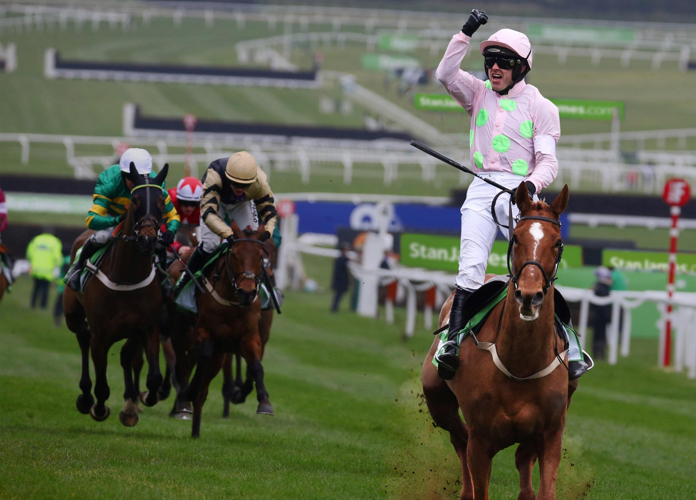 Annie Power won the 2016 Champion Hurdle at Cheltenham