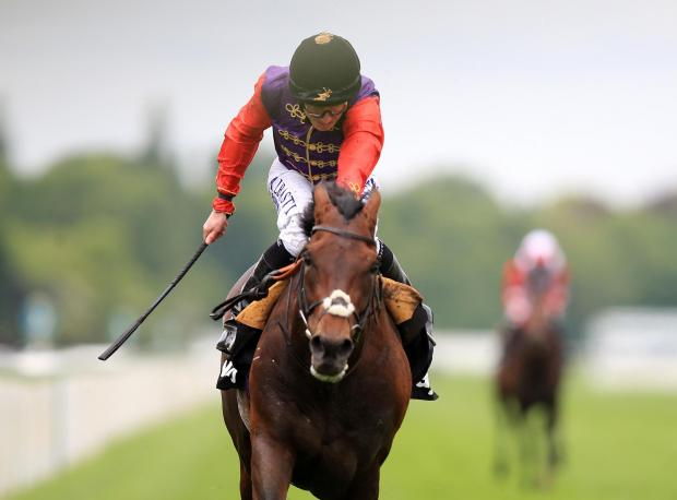 Slough Observer: Dartmouth, ridden by Ryan Moore, wins the Betway Yorkshire Cup during day three of the Dante Festival at York – Picture: Mike Egerton/PA Wire