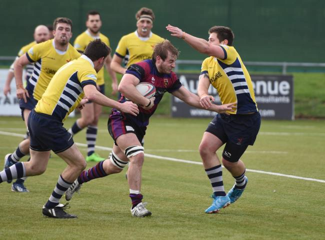 Will Cadden (purple and black) scored two late tries for Maidenhead to secure the losing bonus point on Saturday.