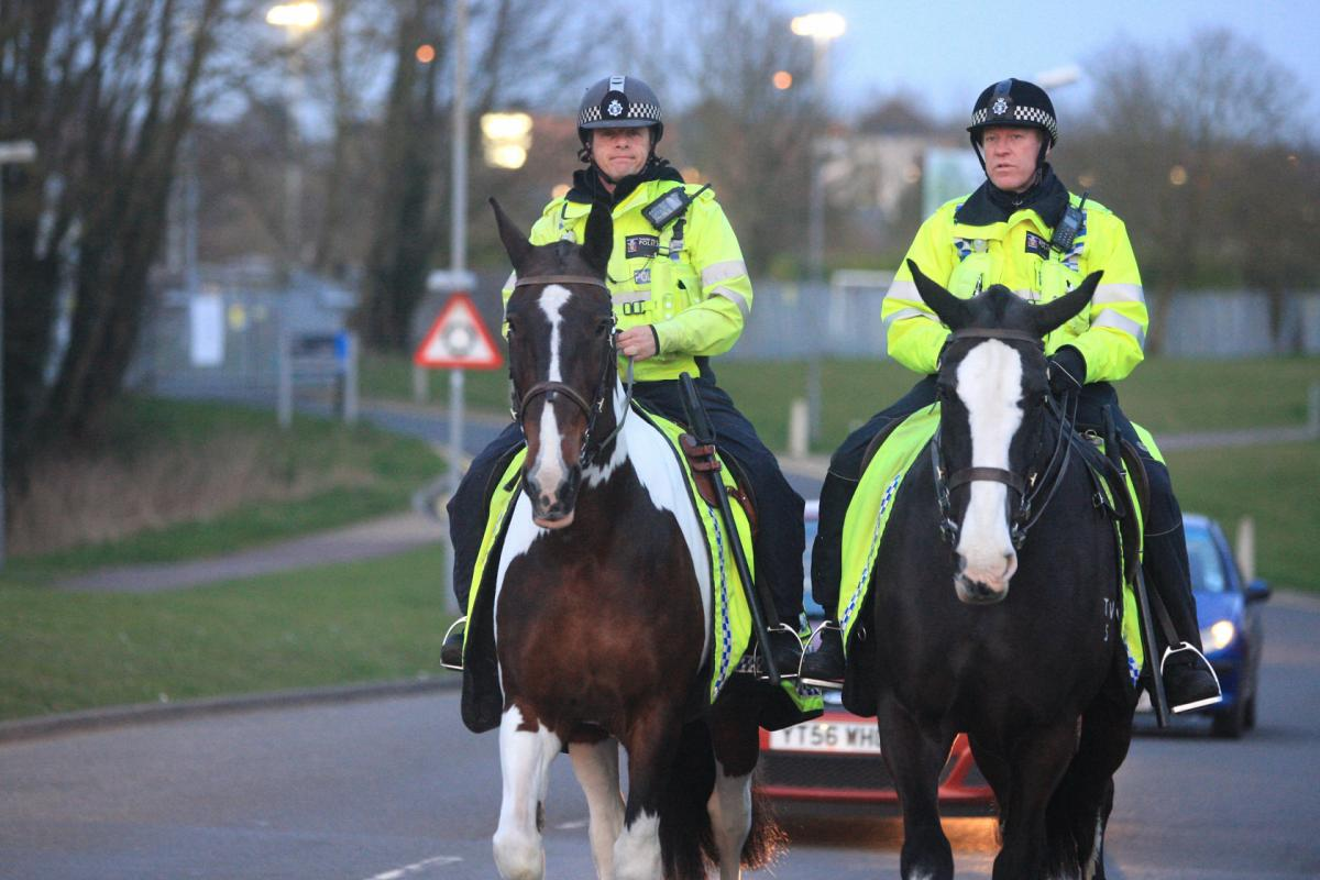 Future of the police Mounted Section remains uncertain