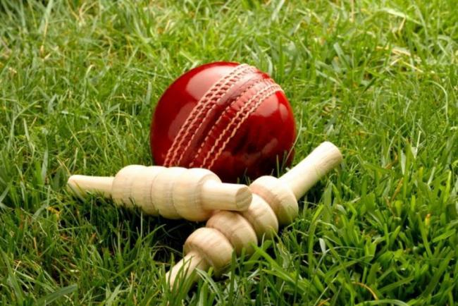 Cricket ball and bat.